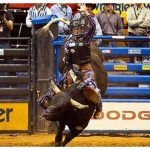 Giddy Up! This summer's guide to the RODEO