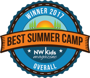 2017 Best overall camp